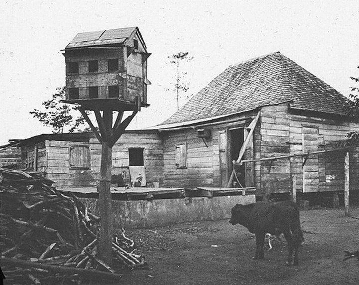Casa con aljibe, palomar y leña en Isabela, Puerto Rico (1899)