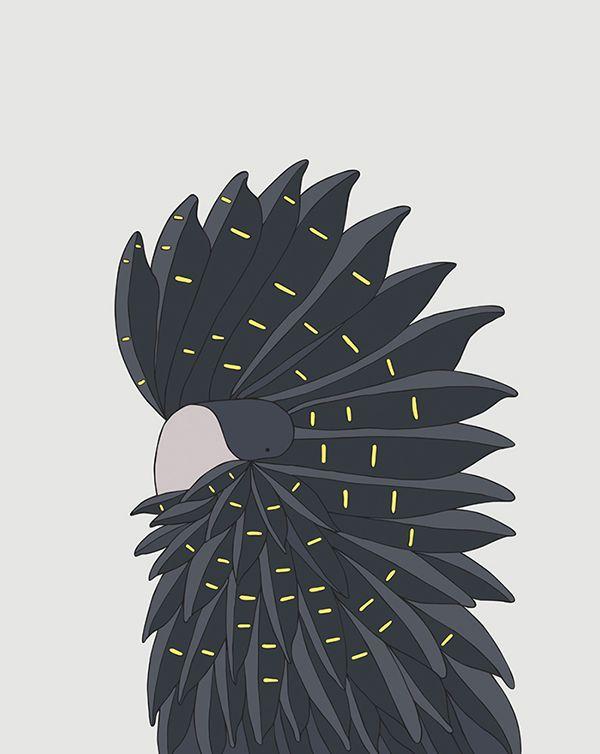 Red-Tailed Black Cockatoo #eggpicnic #illustration #design #art #partofthesolution #conservation #education #redtailed #shop #bird #interior #kids #kidsroom #styling #nature #wild #wildlife #healthy #planet #sydney #australia #australiandesign