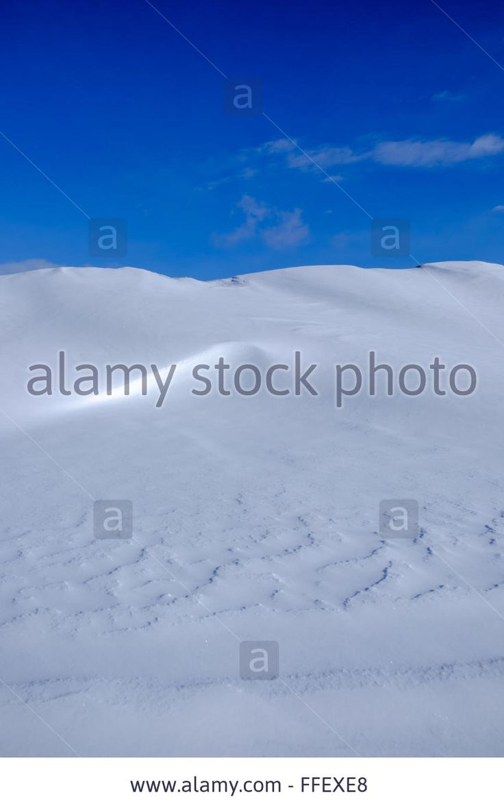 Download this stock image: Snow dunes, light and shadows, winter, blue sky, landscape. Calm, peaceful, quiet, still scene. - FFEXE8 from Alamy's library of millions of high resolution stock photos, illustrations and vectors.