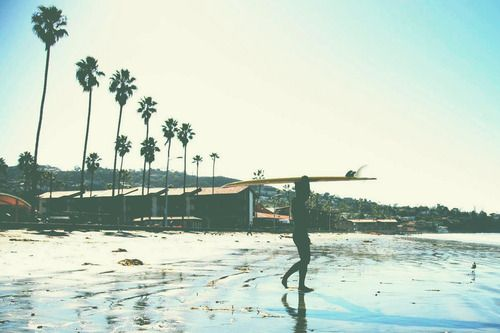 Surfy.: Surfs Up, Beaches Signs, Surfi Sunday, Surfing Up, Summer Paradis, Palms Trees, Torrey Pine, Summer Lovin, Mornings Beauty