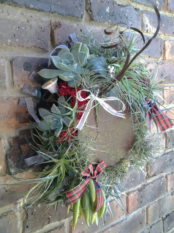 Xmas succulent wreath
