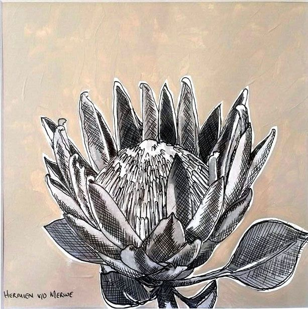 Title: Fynbos:  Table Mountain Fynbos 17 Medium: Pen-and-Ink drawing on paper with oil paint background Size: 200 x 200mm