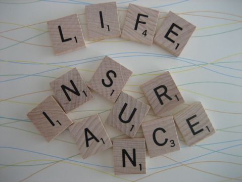 The Types of Life Insurance Policy Quotes    http://www.lifeinsuranceagency.com/when-to-buy