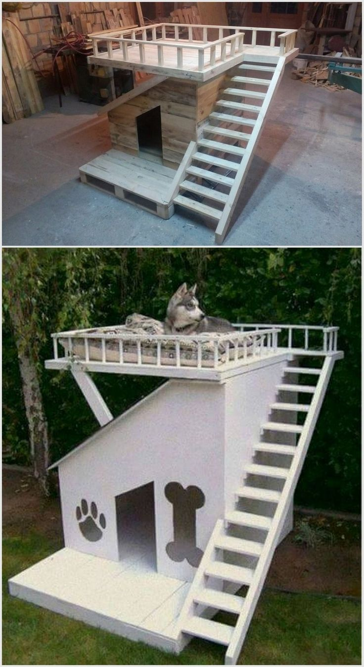 top 25 best outdoor dog spaces ideas on pinterest outdoor dog