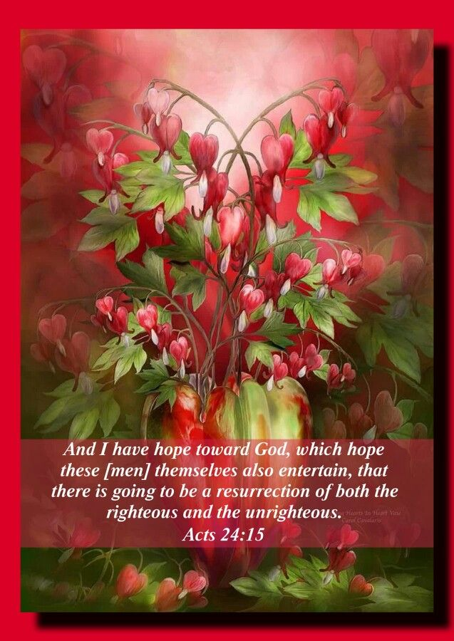 Acts 24:15 (KJV).....And have hope toward God, which they themselves also allow, that there shall be a resurrection of the dead, both of the just and unjust.