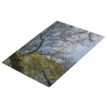 #Spring #Trees in The Sky, Nature #Jigsaw Puzzle #Nature