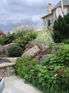 Natural Swimming Pool Plantings - mediterranean - landscape - new york - by Cipriano Landscape Design