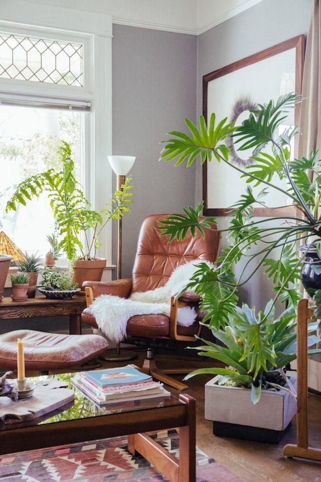 House Plants Heal | La Maison Boheme | Bloglovin'