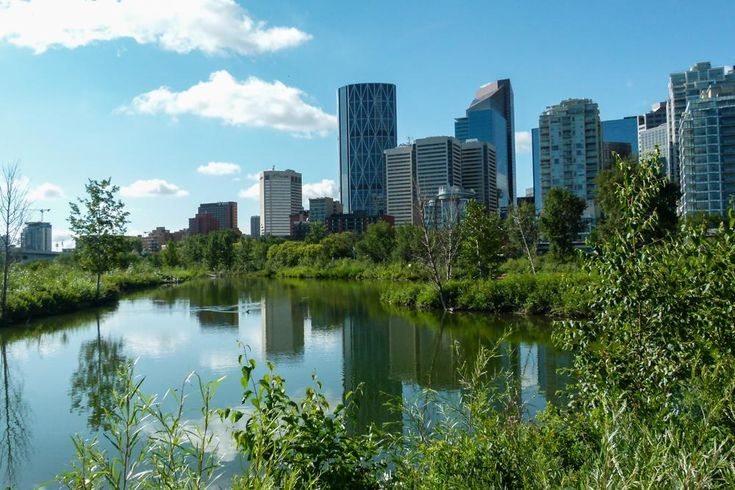 16 Free   Things To Do In Calgary: