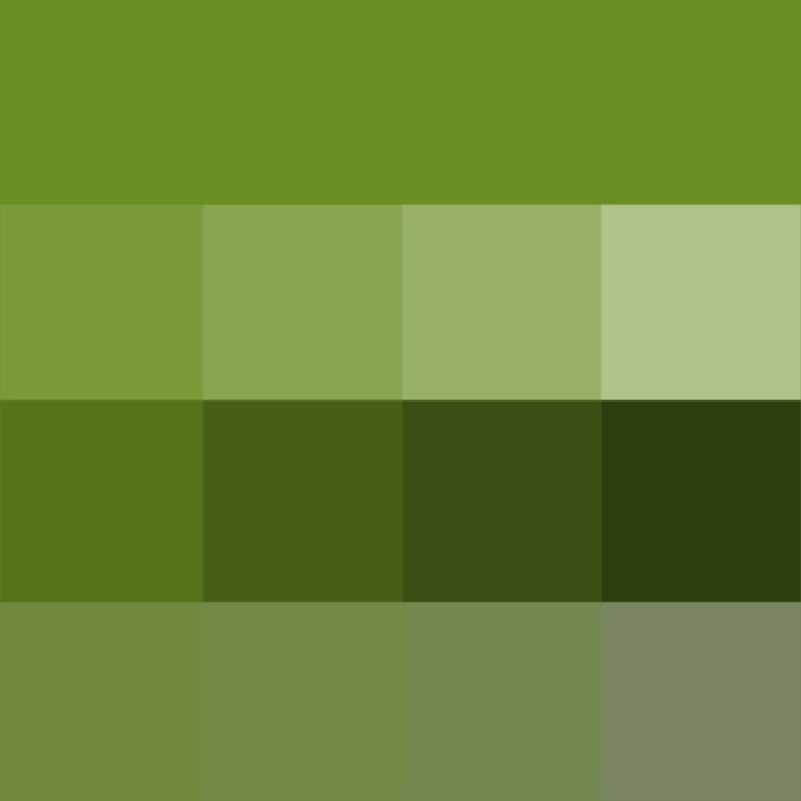 Warm Shades Of Green : Best images about grass color on pinterest paint