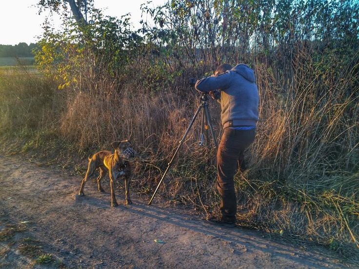 My si s sebou vozíme na focení i ochranku :) Behind the scenes autumn photo.