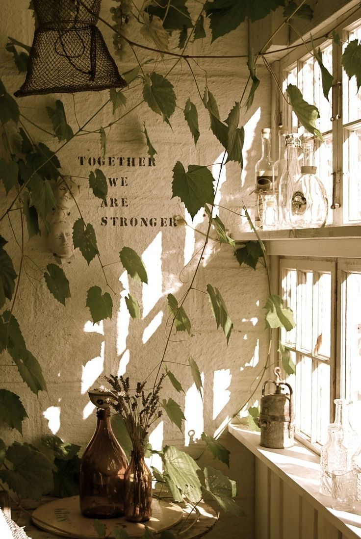 lots of greenery and light. perfect inspiration for a studio.