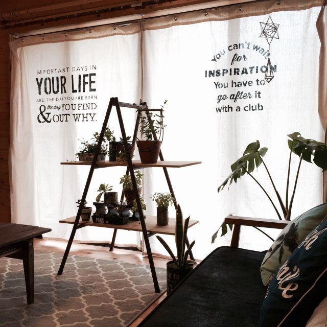 mamyuさんの、Lounge,観葉植物,カーテン,ソファ,ラグ,DIY,ミッドセンチュリー,コーヒーテーブル,錆び,ステンシル,木の家,男前,モロッカン柄,パイプ脚立についての部屋写真