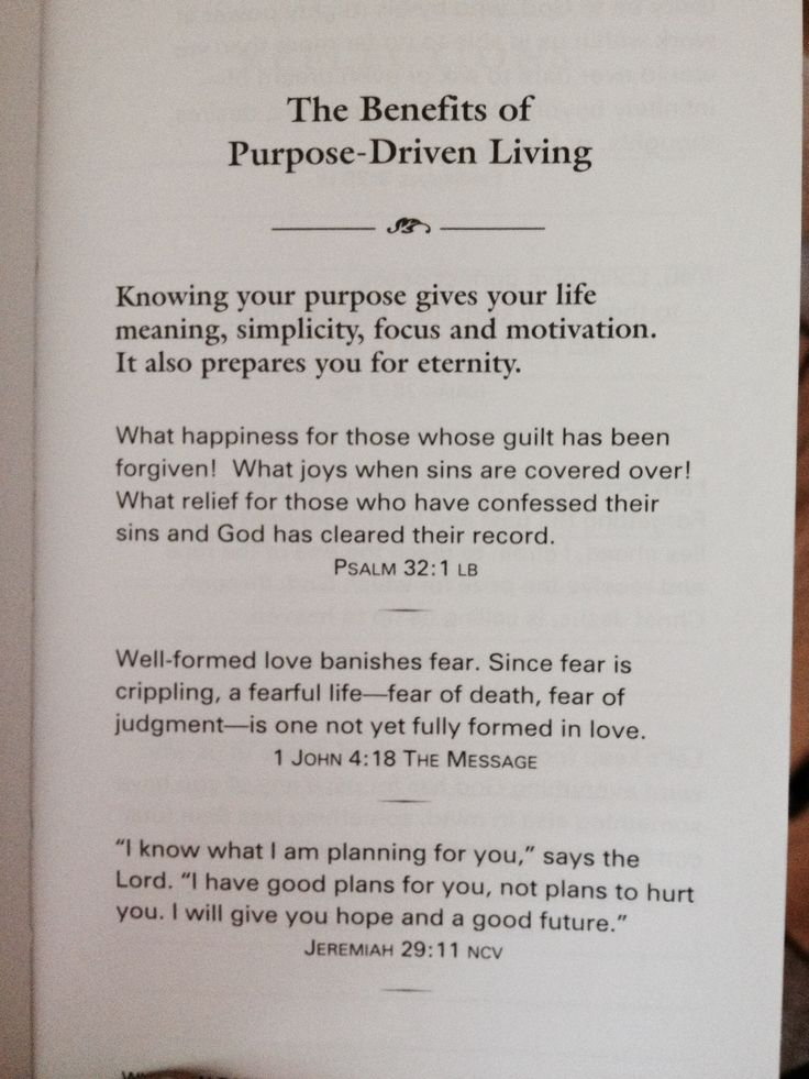 purpose driven life outline