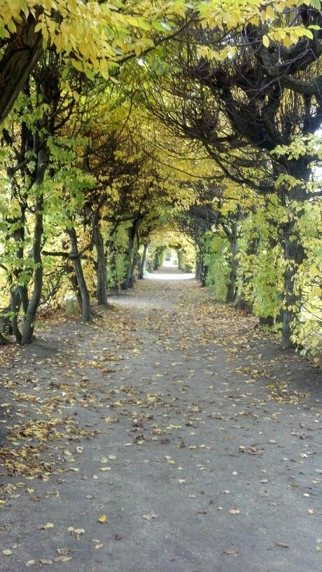 Kromeriz Garden