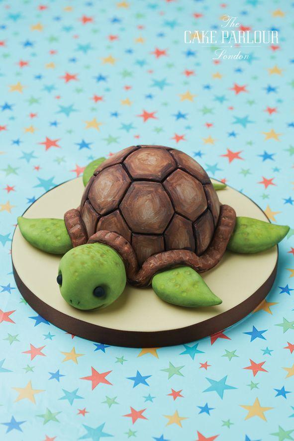 245 best Turtle Cakes images on Pinterest Turtle cakes Turtles