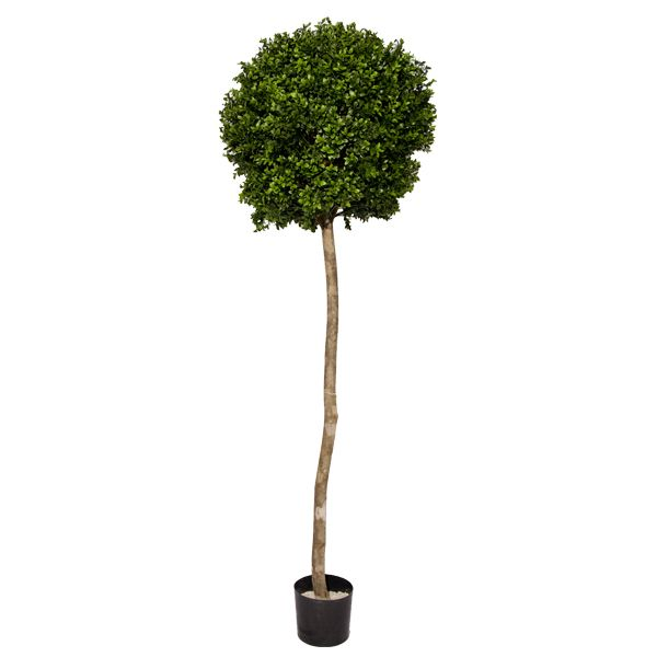 V ronneau plantes et d cors jardin jardin et for Plantes fleurs et jardins