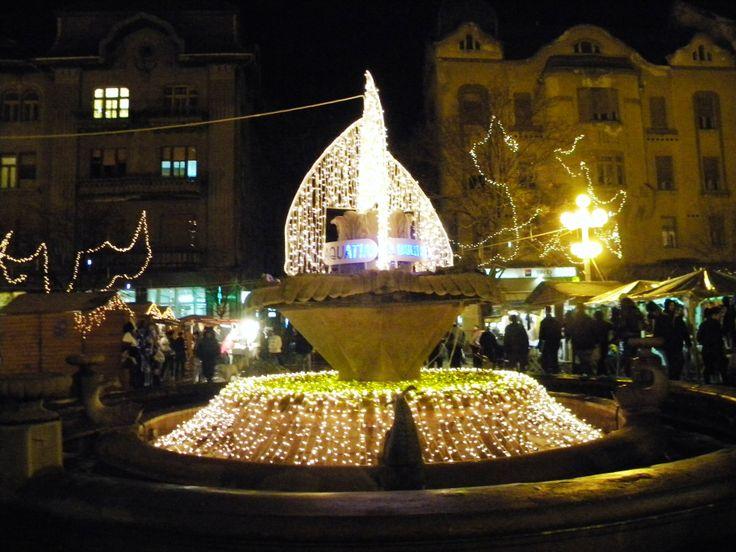 Fintina cu Pesti  Timisoara