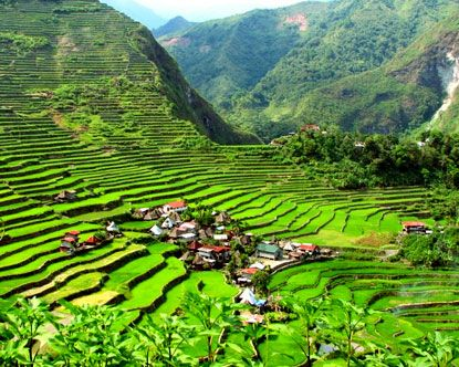 The Banaue Rice Terraces - often called the Eighth Wonder of the world, these terraces were entirely hand-crafted over 2000 years ago.  #travel #Philippines