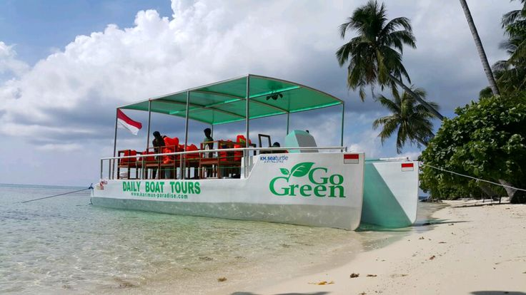 GO-GREEN-TOUR.COM is having the coolest snorkeling and dive trips on Karimun Jawa island in Indonesia