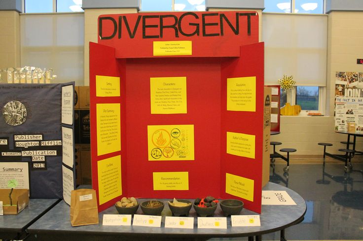 a book report on divergent Divergent book summary & chapter summaries of divergent novel the super super short, tweetable plot summary is: young woman in weird future leaves her family for exciting life, learns it's hard, and ruins villain's plan to destroy government.