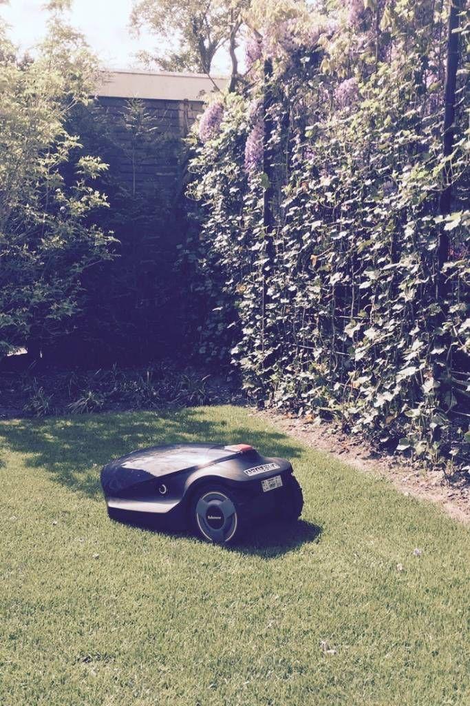 Lekker genieten terwijl het gras wordt gemaaid. #aanhetwerkvoorjou #robomow #robotgrasmaaier #grasmaaier #tuin
