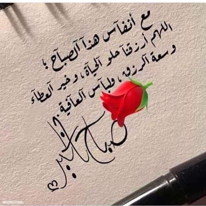 أشرقت الأرض بنور ربها وأشرقت وجوه أحبتى بأجمل إبتسامة السعيد من أسعد غيره Beautiful Morning Messages Morning Greetings Quotes Good Morning Arabic