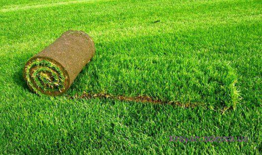 Искусственный газон без хлопот и забот