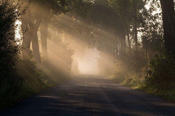 paisajes luz plena - Buscar con Google