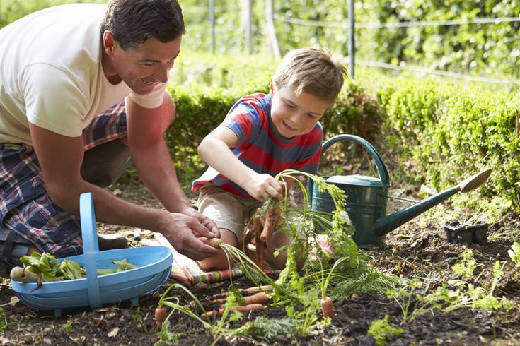 Gyerek a kertben - PROAKTIVdirekt Életmód magazin és hírek - proaktivdirekt.com