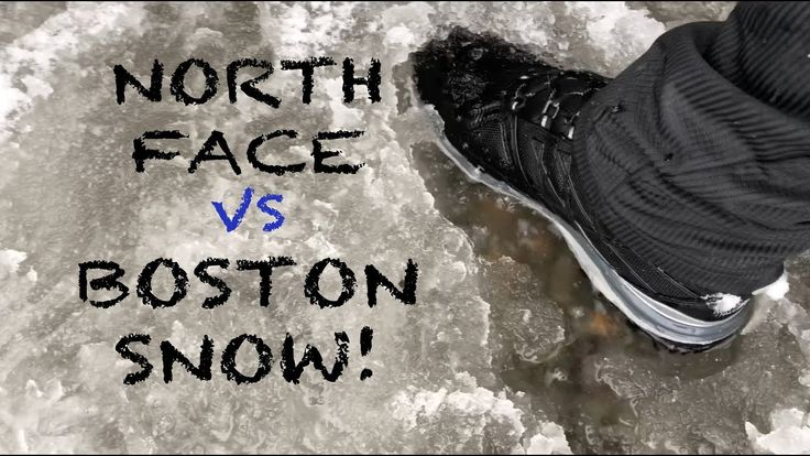 Boston snow storm hike with German Sheppard & Goodendoodle Agassiz Rock Essex MA USA #hiking #camping #outdoors #nature #travel #backpacking #adventure #marmot #outdoor #mountains #photography