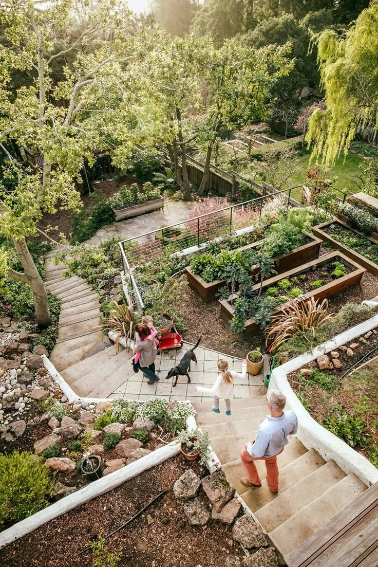 Best 25 Sloped Backyard Ideas On Pinterest Sloping