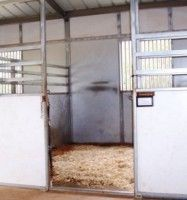 The Way of Horses with Eleanor Blazer: Bedding for Horse Stalls