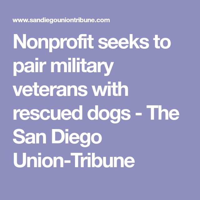 Nonprofit seeks to pair military veterans with rescued dogs - The San Diego Union-Tribune