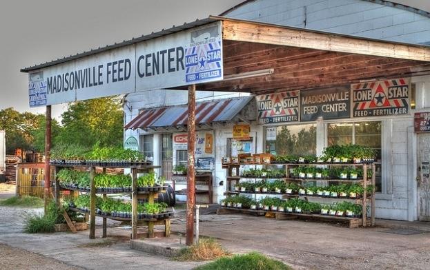 Madisonville, Texas