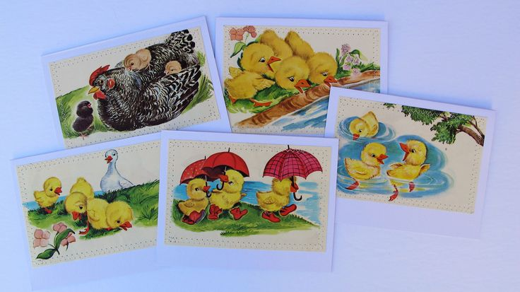 vintage chick card set, all occasion handmade vintage baby chicken book illustration card set by BurkeSevenVintage on Etsy https://www.etsy.com/ca/listing/528919398/vintage-chick-card-set-all-occasion