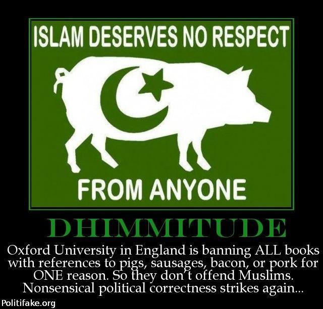 OBAMA CARTOONS: Islam deserves no Respect: