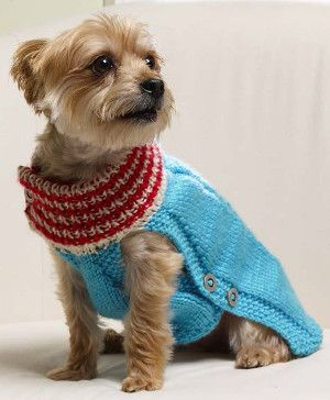 This DIY dog coat will keep your pup looking fabulous this holiday season.