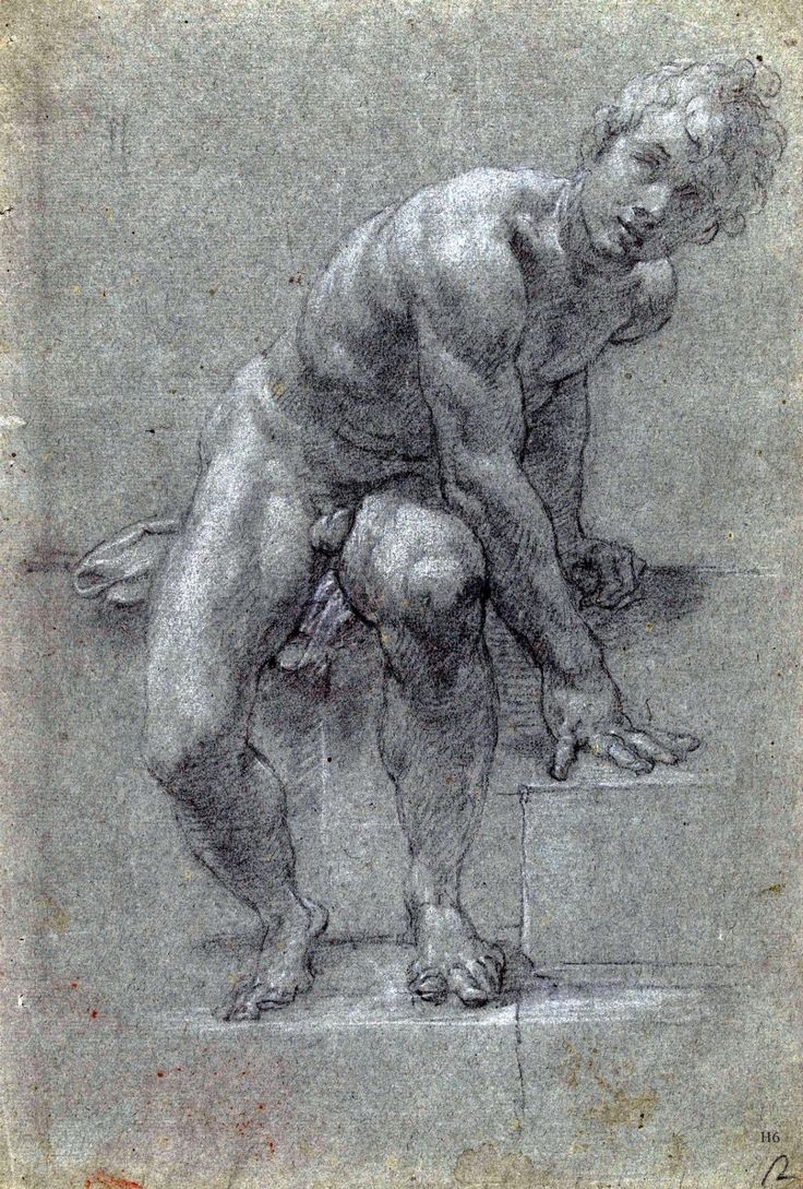 Male Nude Study. 17th.century.Artist unknown. chalk on paper.