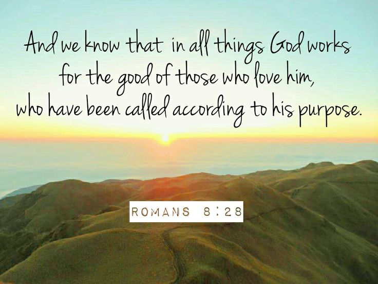 romans 8 28 - Google Search