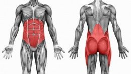 How to Exercise Transverse Abdominal Muscles