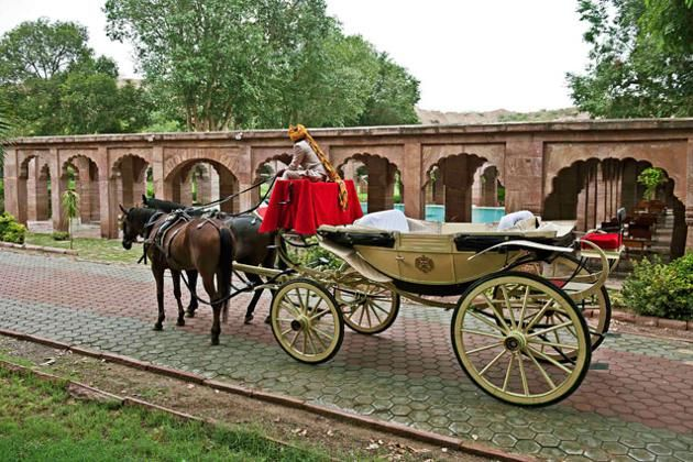 A horse drawn carriage at Bal Samand Lake Palace. Grooms can arrive at the wedding in their choice of vintage car or royal horse-drawn carriage. The palace staff will organise everything from customised menus and stay for your guests to travel arrangements you may need. If your guests are in the mood to experience Rajasthani culture, they will even arrange entertainment in the form of high teas, polo matches or sand dune safaris.