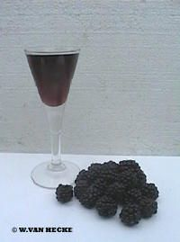 Braambessenlikeur is een likeur gemaakt van braambessen, suiker, kaneel en graanjenever
