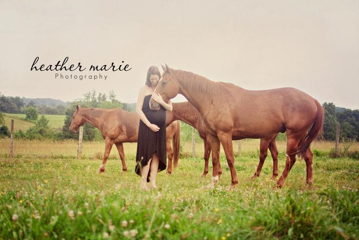 old friend soon to meet the new baby...horse & maternity