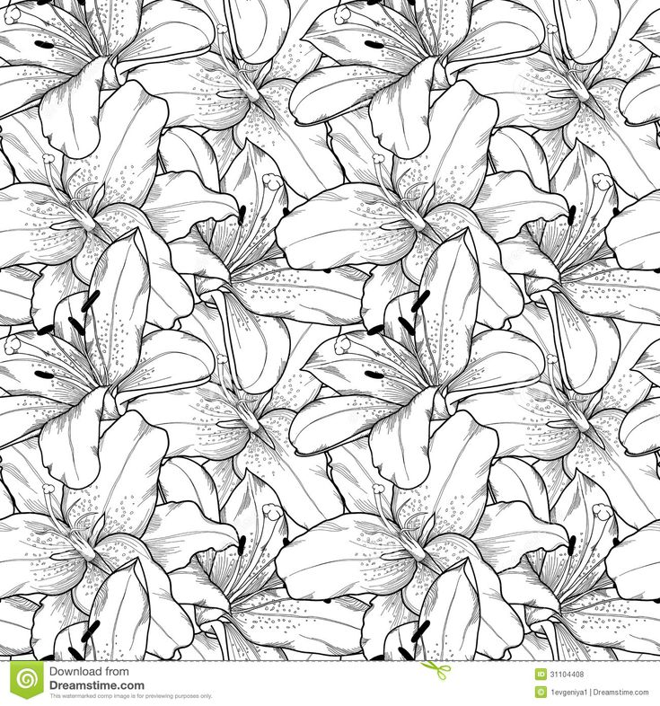 Seamless Background Of Black And White Lilies Hand-drawn - Download From Over 30 Million High Quality Stock Photos, Images, Vectors. Sign up for FREE today. Image: 31104408