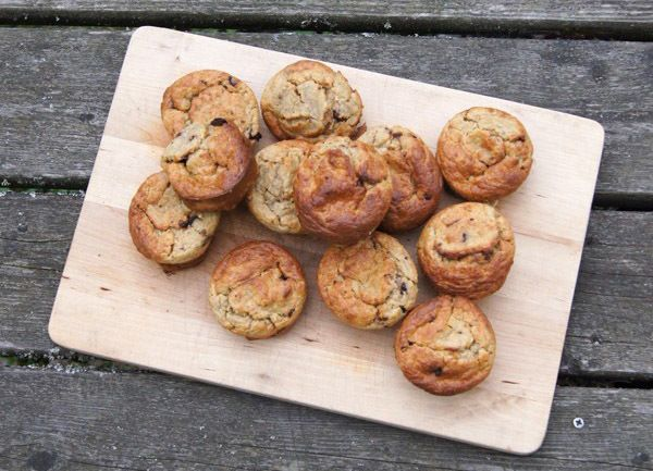 Healthy chocolate oat breakfast muffins