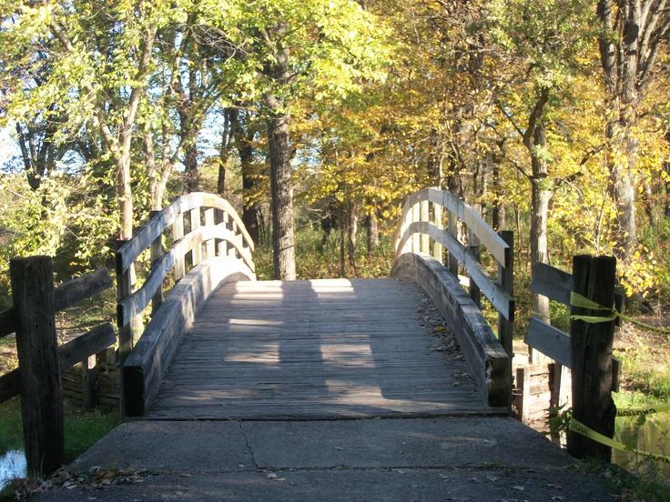 Bridge on Trail Walk in my city.
