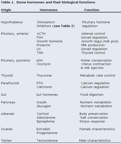 Endocrine Case Study - Endocrine Case Study April 9/19 ...