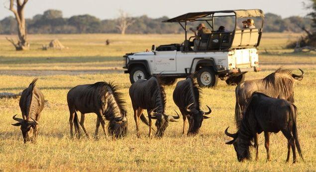 """Εθνικό Πάρκο επιθυμεί να απαγορεύσει τα app που σχετίζονται με ζώα - http://secn.ws/1td3bqJ -   Τα app που ανταλλάσσουν πληροφορίες σχετικά με θεάσεις ζώων έχουν γίνει """"μια σημαντική αιτία ανησυχίας"""", σύμφωνα με την αρχή που διευθύνει τα εθνικά πάρκα στη Νότια Αφρική.   Η χρήση"""