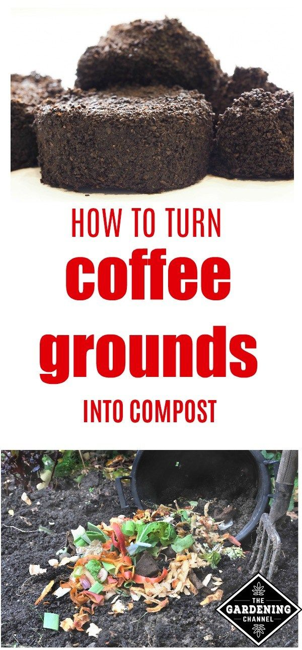 How To Compost Coffee Grounds Compost Garden Compost How To